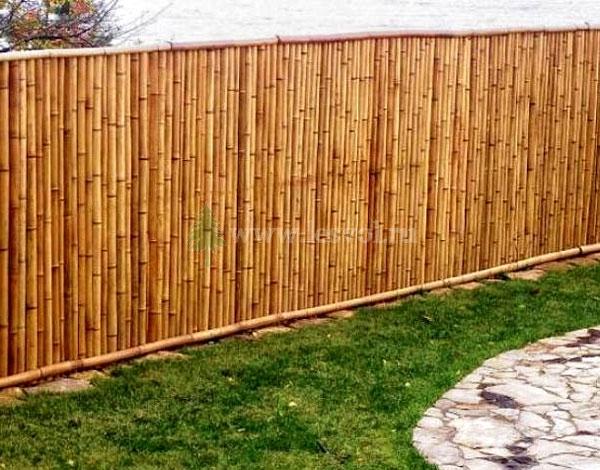 for Recouvrir un mur exterieur